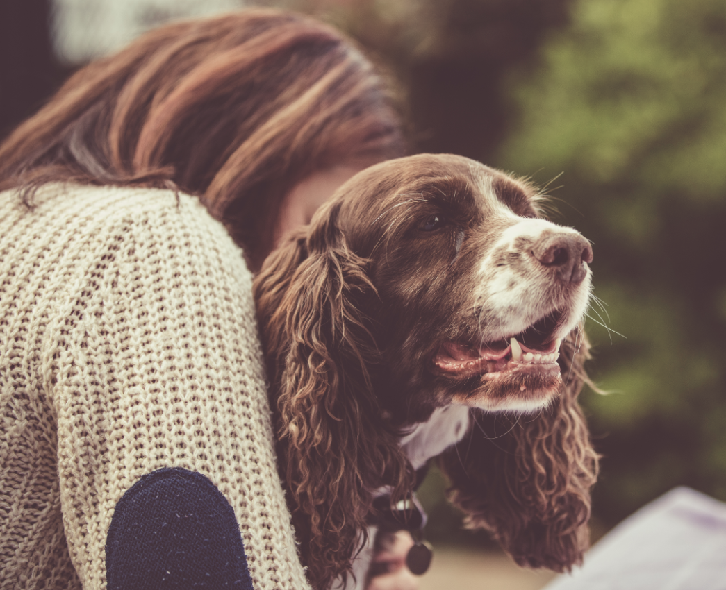 How Owning a Dog Improves Your Life